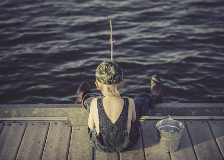 Where Does Hunting/ Fishing License Money Go?