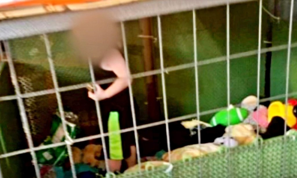 Boy Rescued From Cage