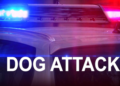 Dog Attacks and Kills Smaller Dog: Portsmouth Police Reports